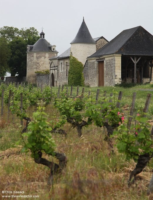 Château de la Bonnelière