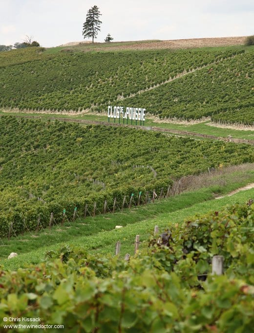 Central Vineyard Geology: Oxfordian caillottes and griottes