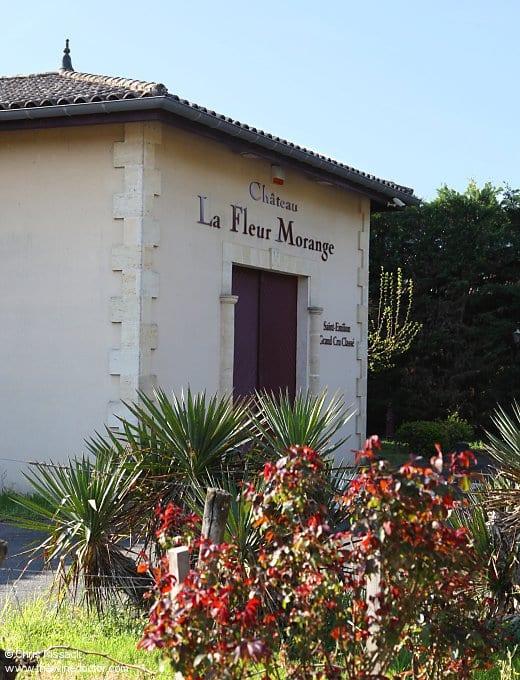Château La Fleur Morange