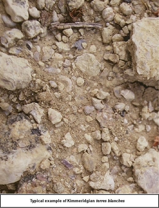 Central Vineyard Geology: Kimmeridgian terres blanches